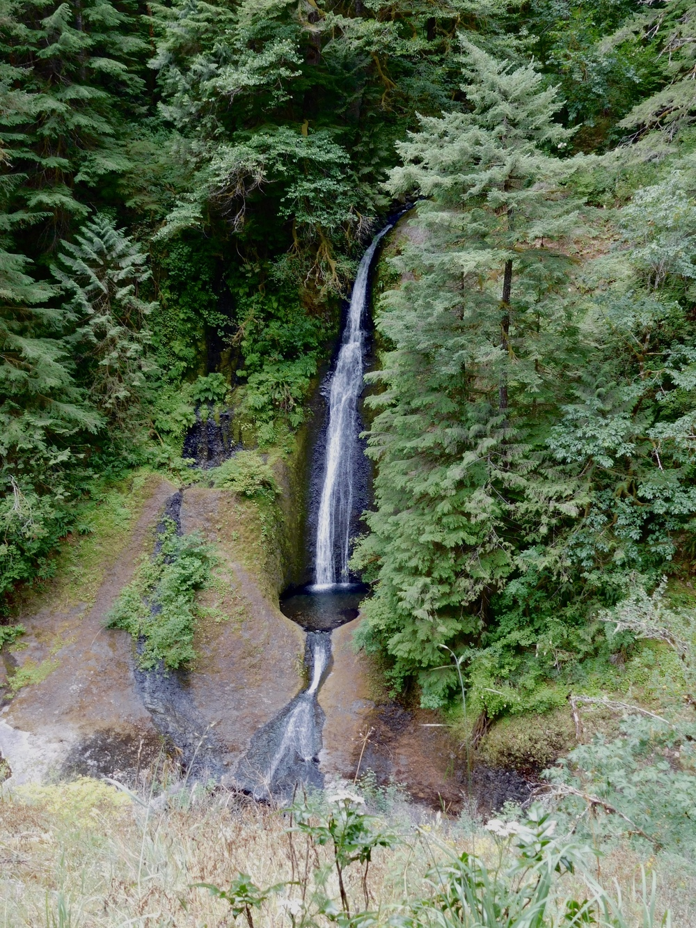 "The ""sound"" of a waterfall-Eagle Crest Trail, Columbia River Gorge, July 4, 2016"