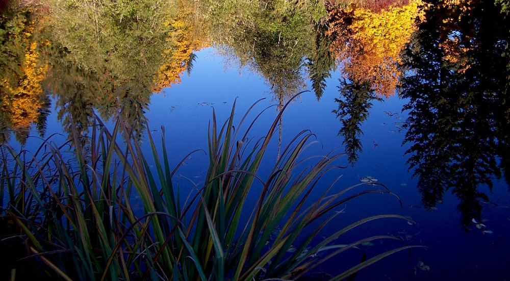 Hidden Lake in the autumn