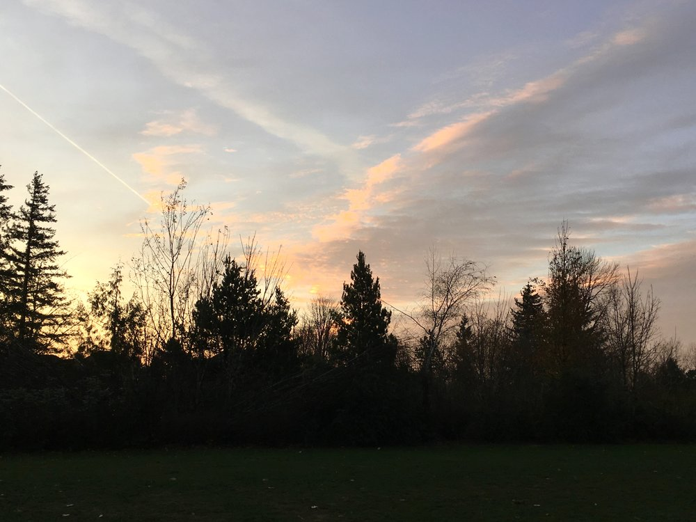Sun rising late in early December, two weeks before the solstice. Grief is a kind companion on my morning walks. photo by anne richardson. Lake Oswego, OR