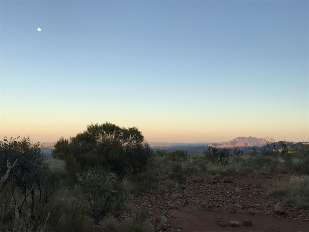 Larapinta trail.jpg