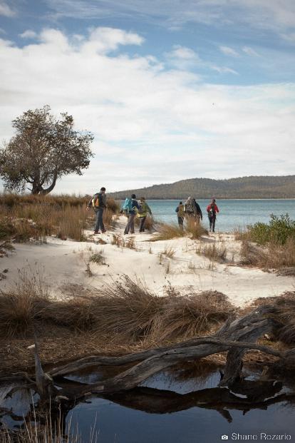20120905-Primal FIt Maria Island 0252.jpg