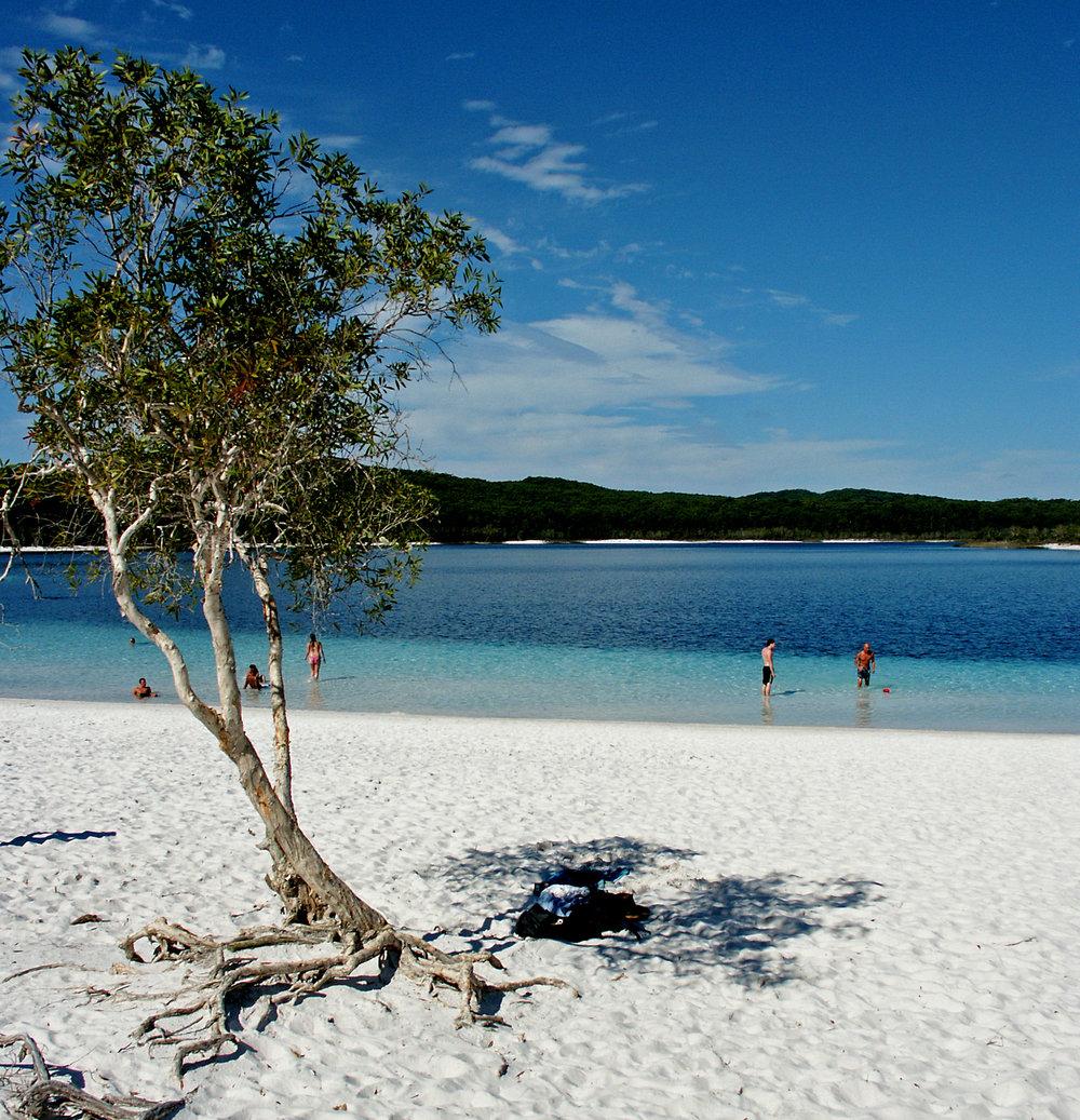 Fraser island lake mackenzie copy.jpg