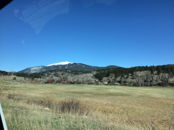 Car views