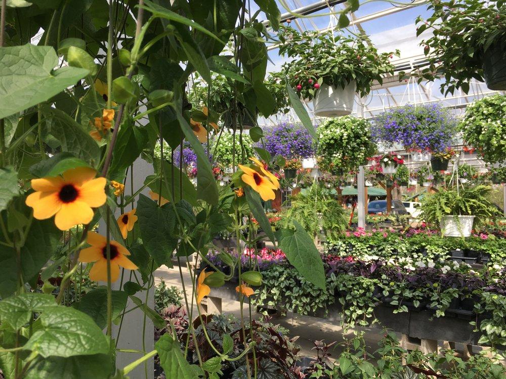 Inside the plant nursery