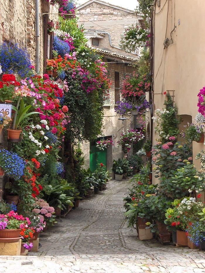 Italian Street.jpg