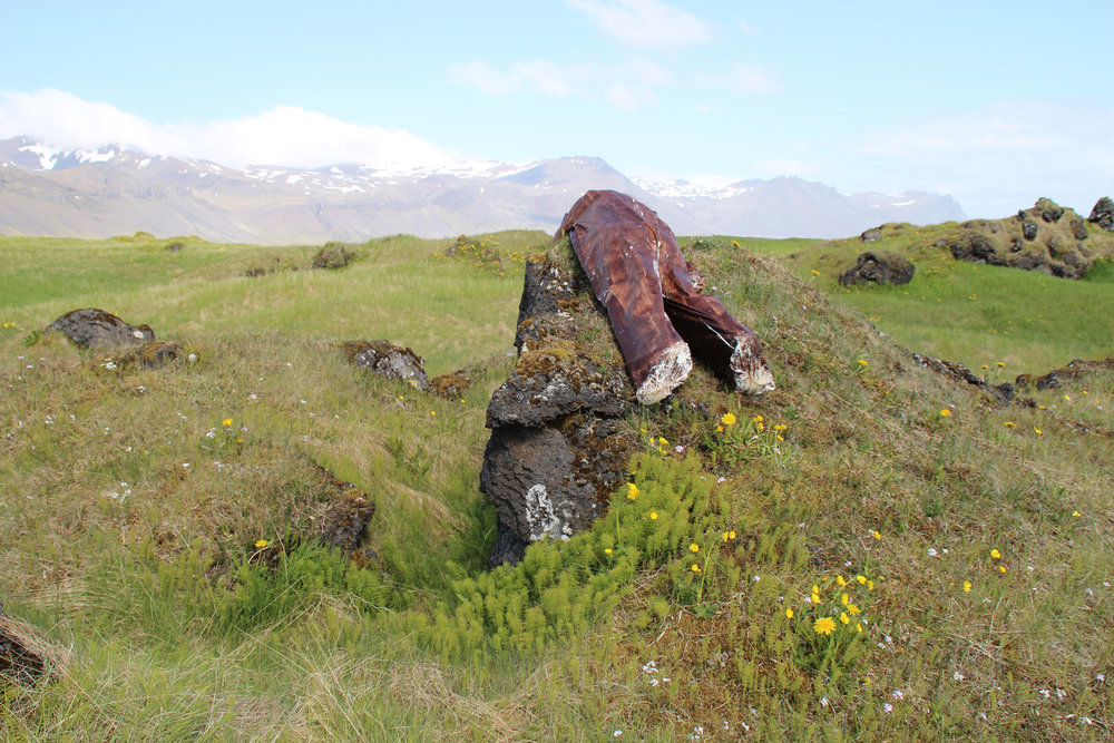 4_MariaGaspar_Sightings_Iceland_2012.jpg