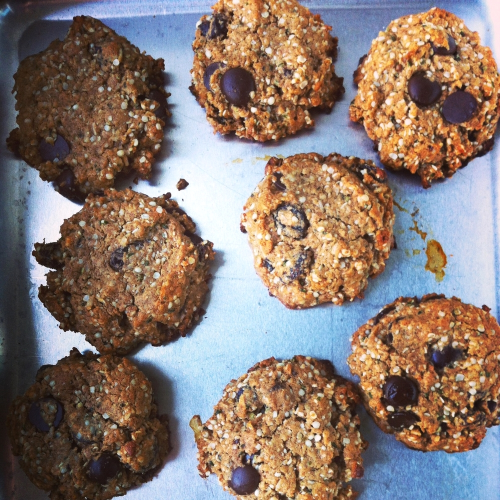 hemp seed chocolate raisin cookies