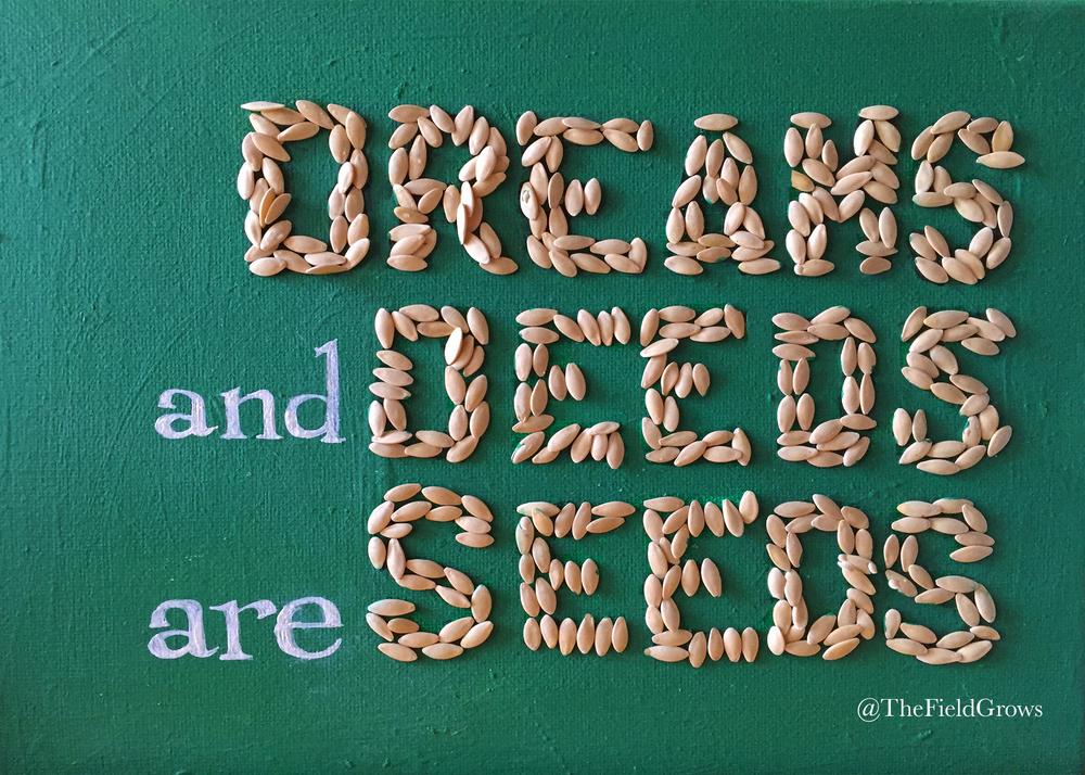"""Seeds"" Jeremy Cone. 2016"