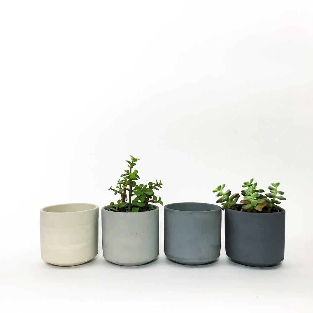 SETTLEWELL - Straight Sided Pot - 1.jpeg