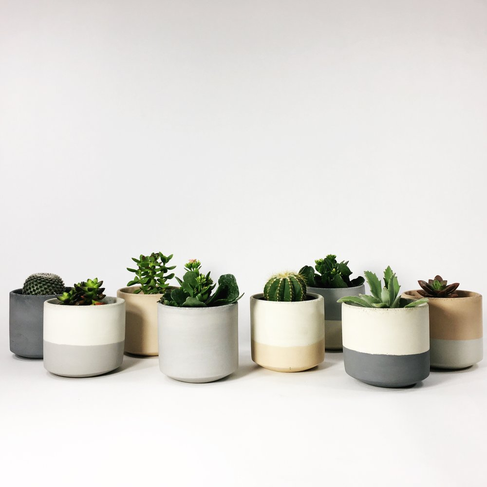 SHOP STRAIGHT SIDED POTS >