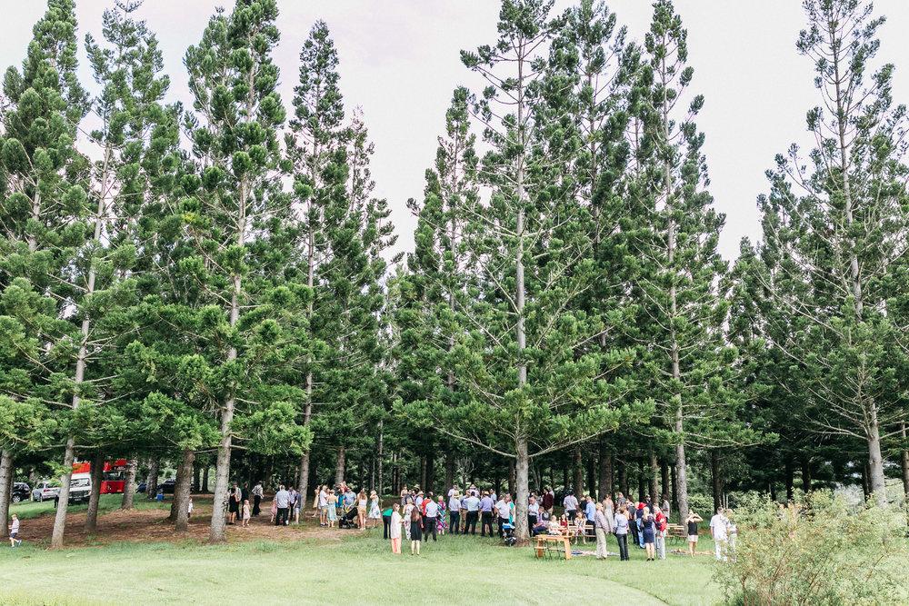 True North Photography_Jess and cott_Midjimbil Hill_Northern NSW_Mt Warning wedding_Crams Farm Wedding_Barm Wedding-127.jpg