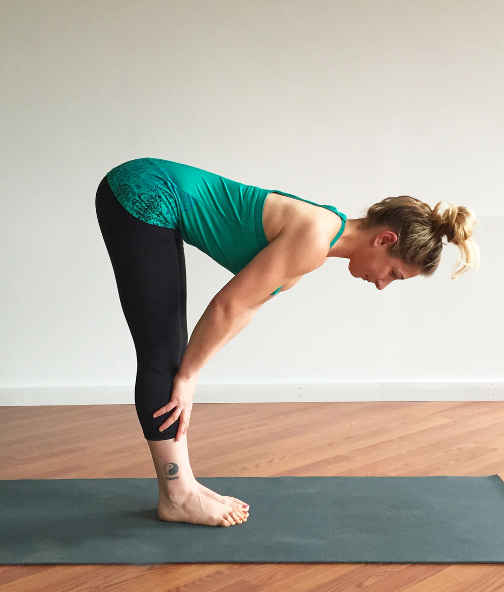 Sage Yoga Beginners.png