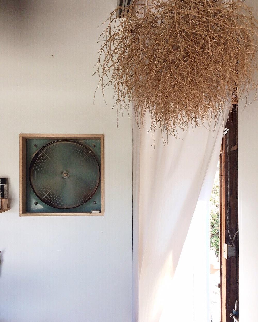 Studio of woodworker Silvia Song. El Cerrito, CA.  2016 |iPhone
