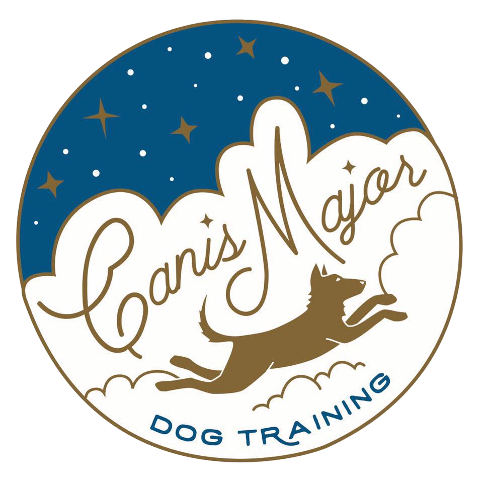 Canis Major Dog Training