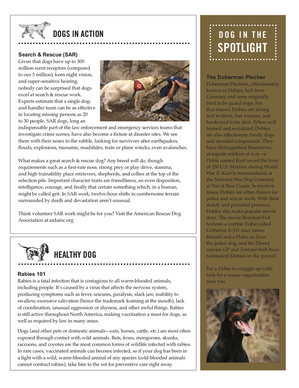 newsletter pg 3.jpg