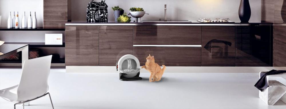 CatFOuntain.Kitchen Render Scene.png