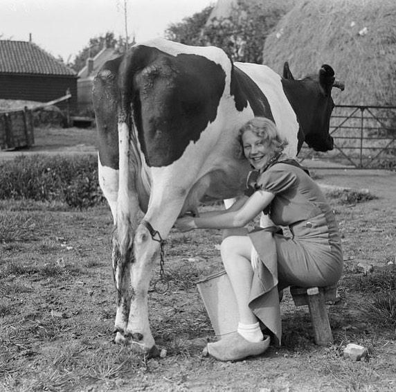 What are your plans this weekend? . . . . . . #morningmilking #milkinginadress #geterdone #happymilking #vintagephoto #milkingweekend #womensheritage