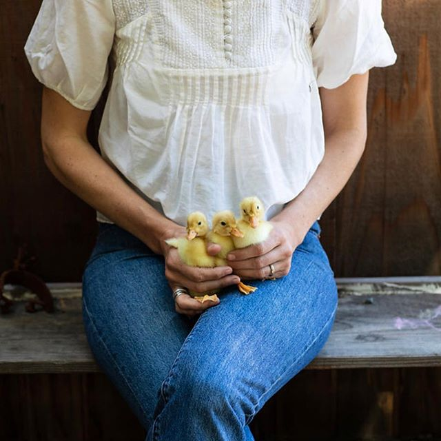 See @thechalkboardmag and Lauren's interview about balancing caring for her animals, work and family on link in profile. 📷 @brittanyesmith . . . . . . . . #chalkboardmag #animals #farmlife #balancing #womensheritage