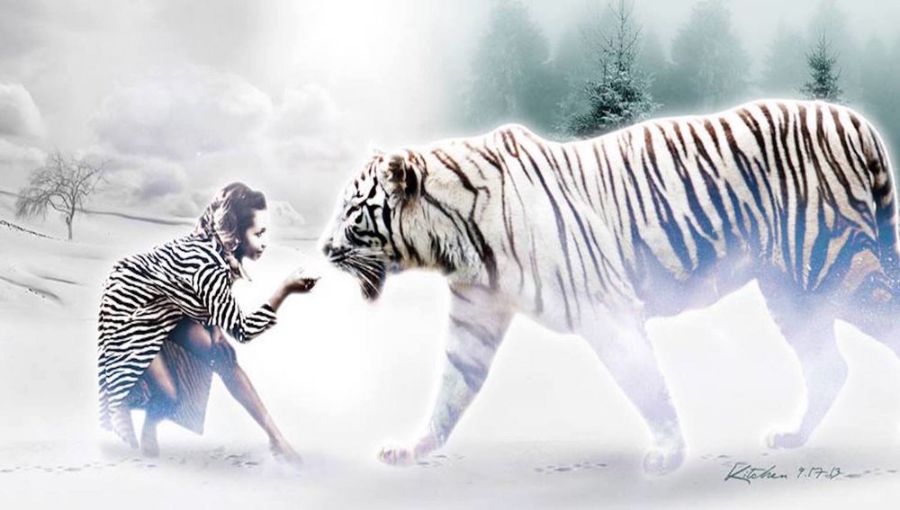 TigerTora.jpg