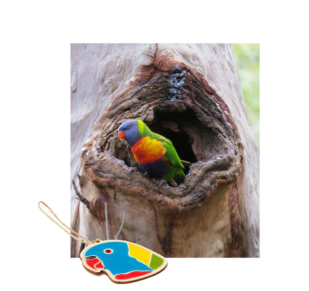 RainbowLorikeet_Ornament_OuterIsland.jpg