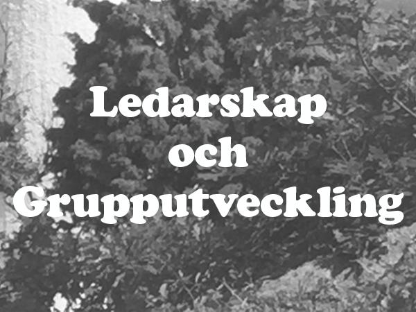 puff_ledarskap.png