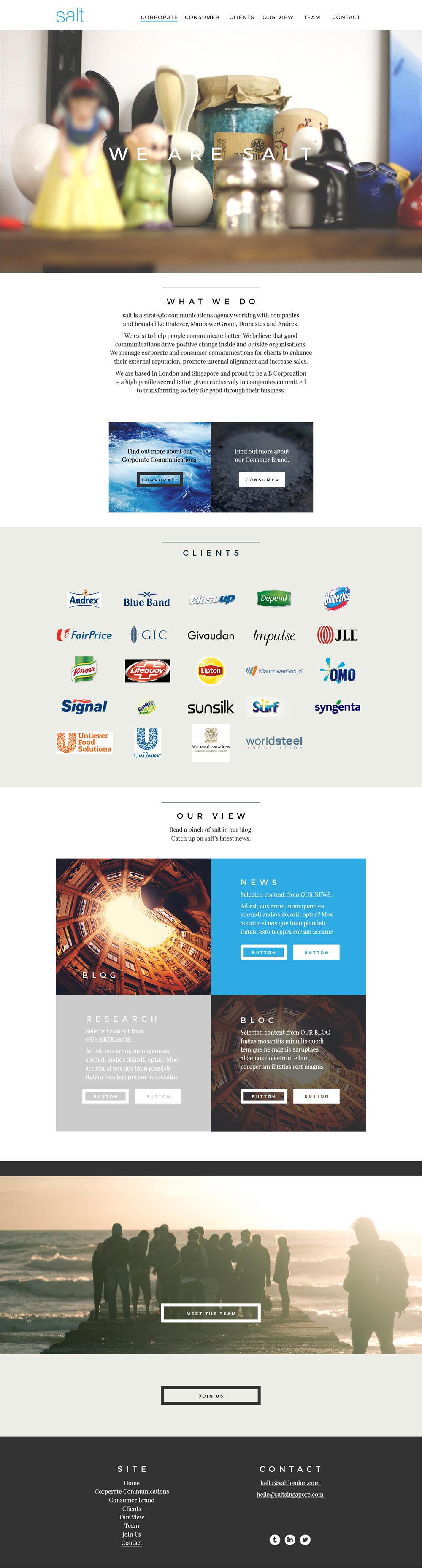 01 Salt Homepage WIP 05.jpg
