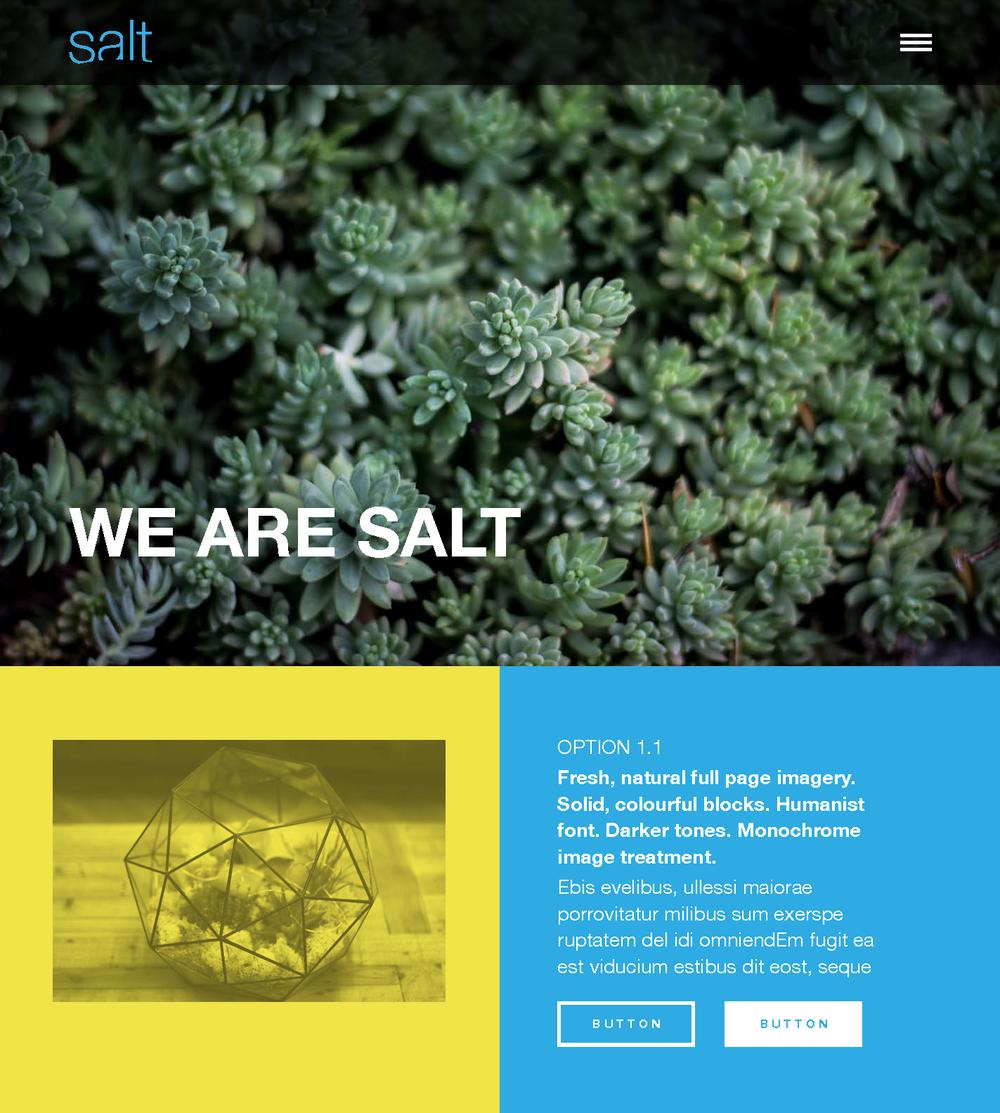Salt Website Concept WIP 02_Page_2.png