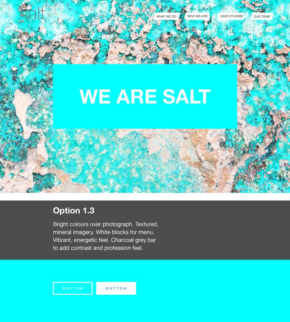 Salt Website Concept WIP 02_Page_4.png