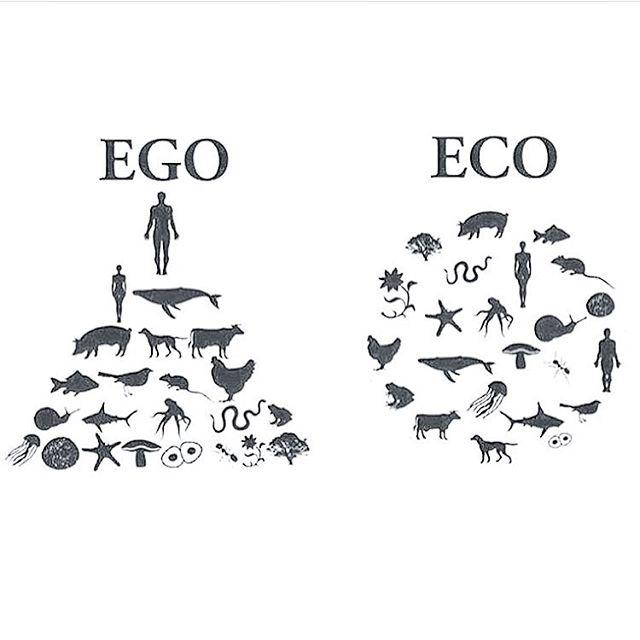 Let's work with nature rather than against it 🍀 • • •  #organicwine #biodynamicwine #organiclife #ethicalbusiness #fairtrade #sunscriptionbox #wine #winery #wines #winelover #winetasting #veganwine #vegan #organic #veganfoodshare #organic #organicliving #london #londonlife #biowinebox #ecofriendly #nature