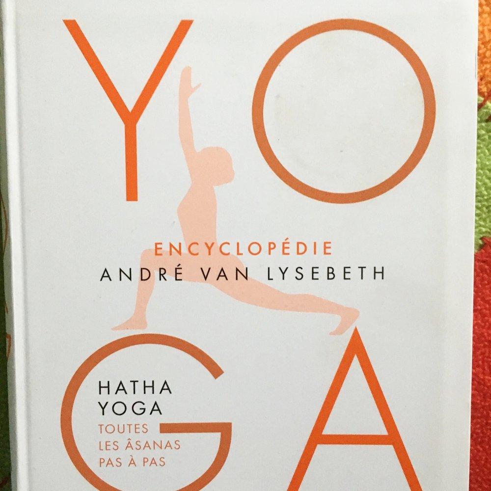 Encyclopédie du yoga   André Van Lysebeth 2016