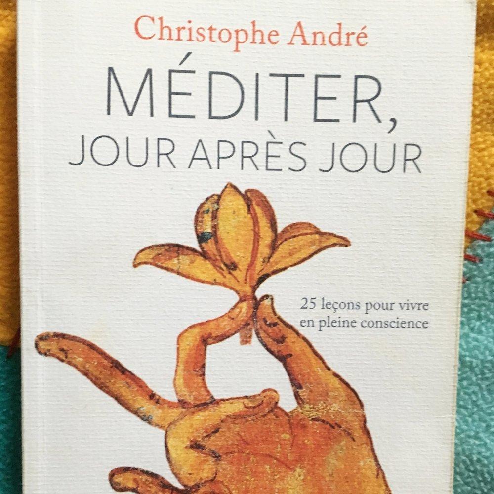 Méditer, jour après jour   Christophe André