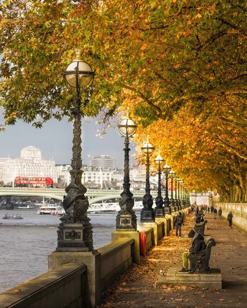 River Thames Autumn Digital Acrylic Print | 61 x 76 cm | £450 (framed) Digital Print on Gloss | 41 x 51 cm | £75