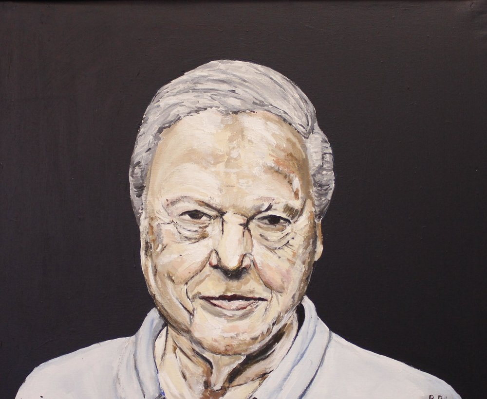 David Attenborough, 2016 Acrylic on canvas | 61 x 71 cm (framed) £250