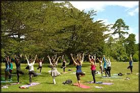 yoga stock.jpg