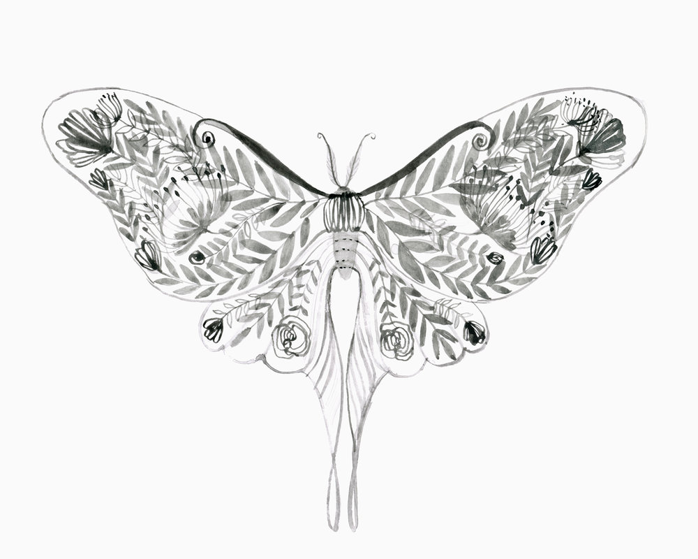 Website_luna_moth_floral.jpg