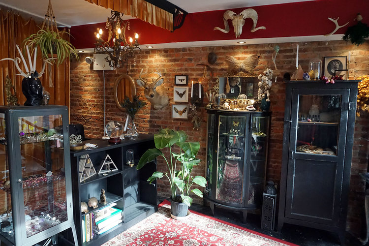 1d7cfdfa3 Shop Gallery — Black Iris Tattoo