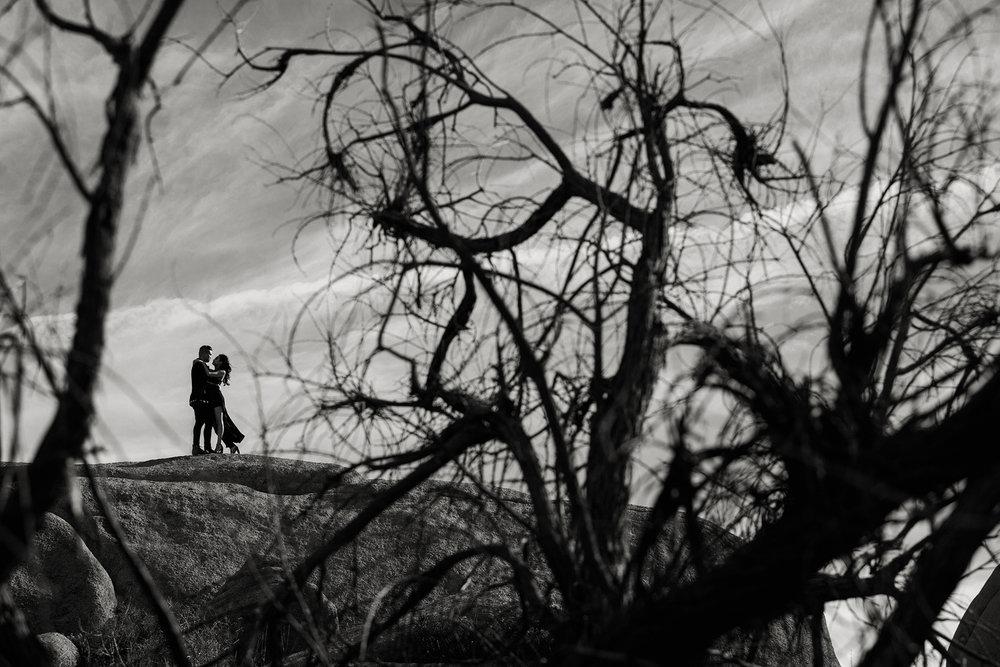 Joshua Tree Engagement Photo