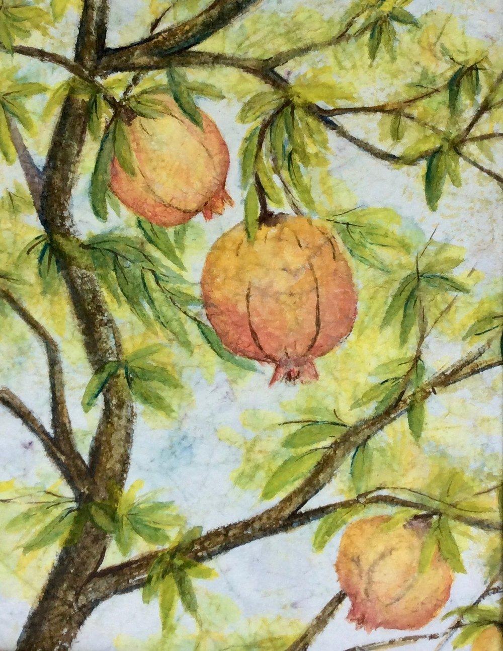 C52 Pomegranate Tree II.jpg