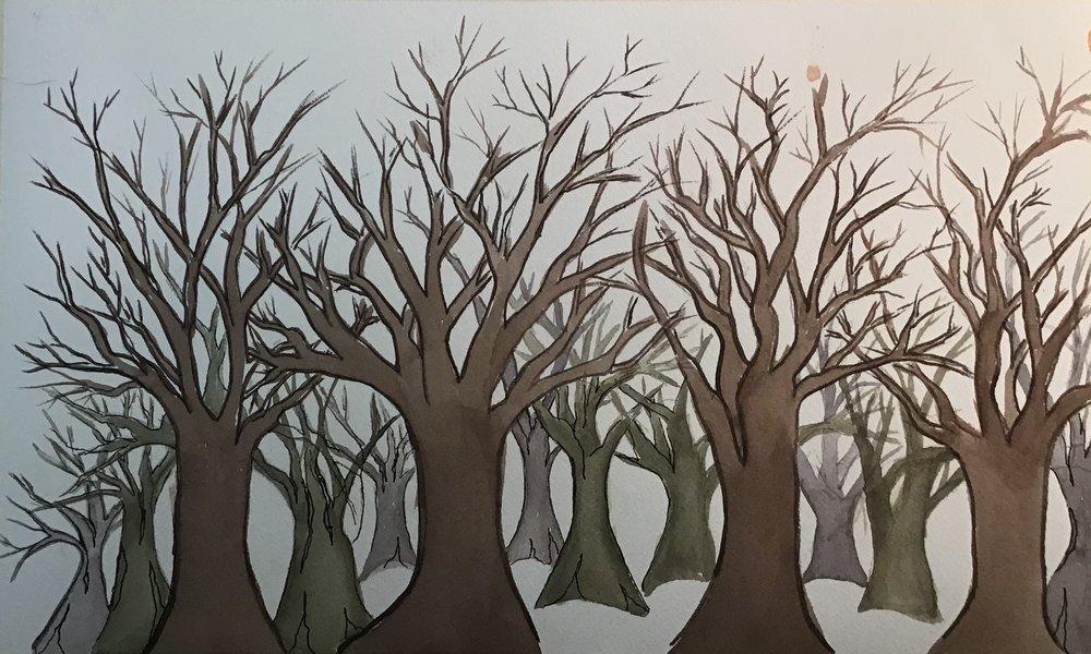 Inital Trees.jpeg
