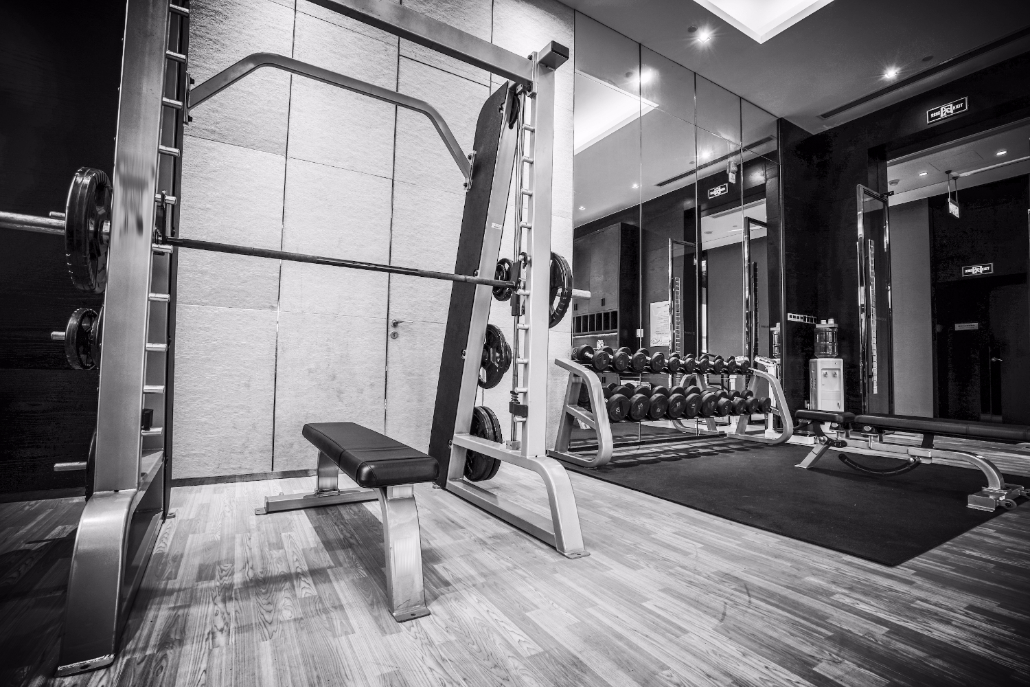 Private Gym Design — Hagan & Pappin