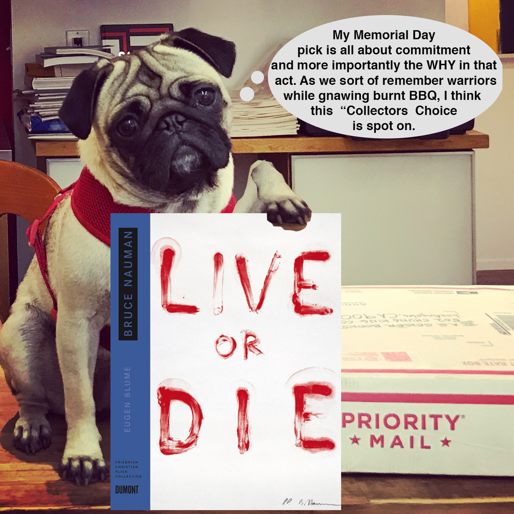 Pug Pick of the day23.png