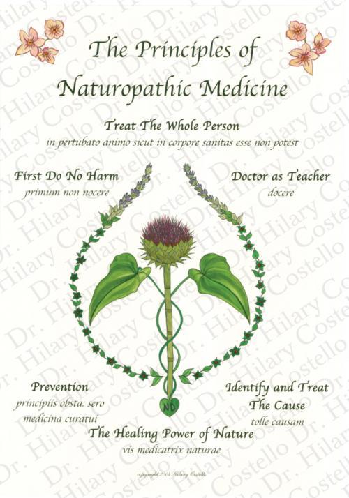 Copyright - Dr. Hilary Costello -- http://lucaholisticmedicine.com