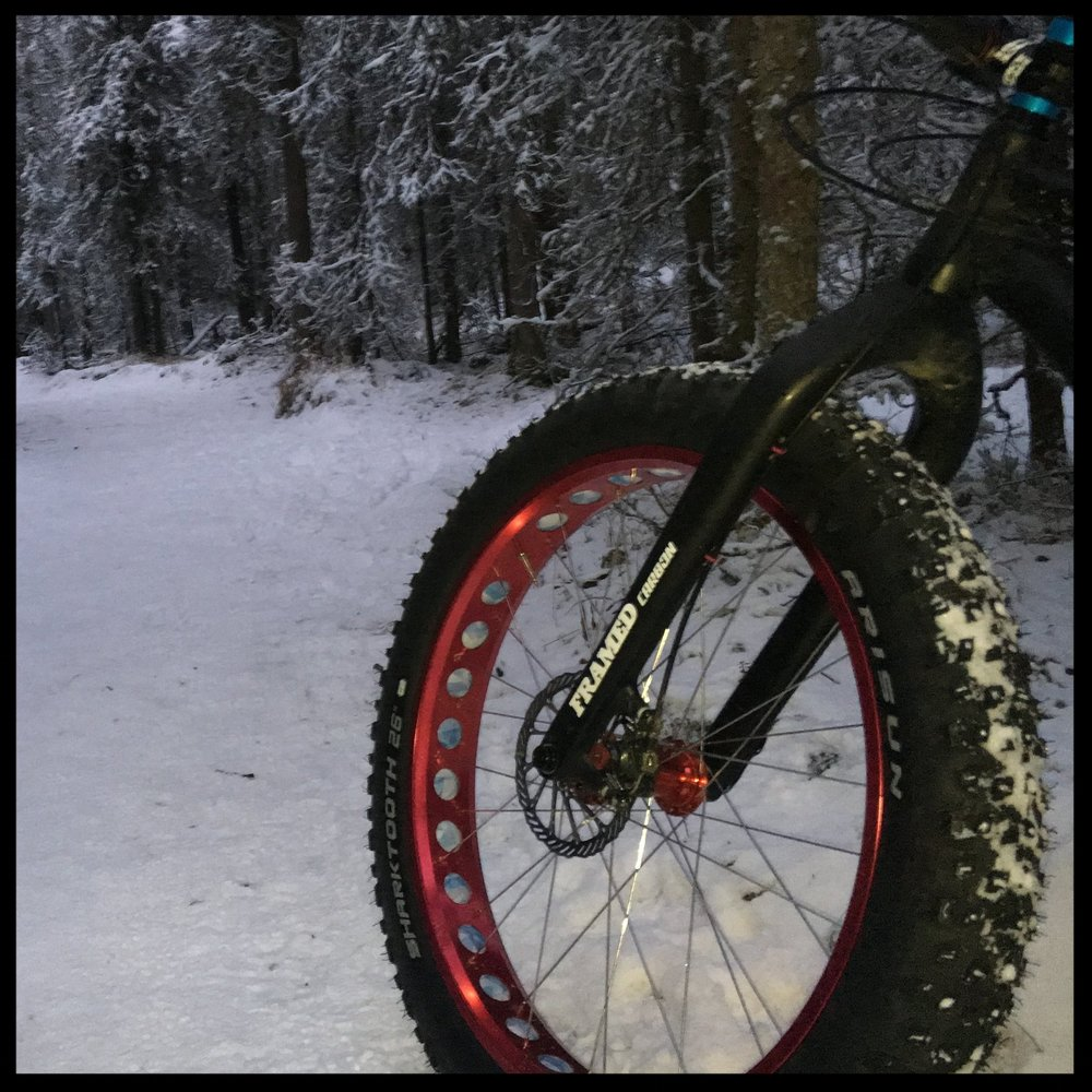 Studded Fat Bike Tire