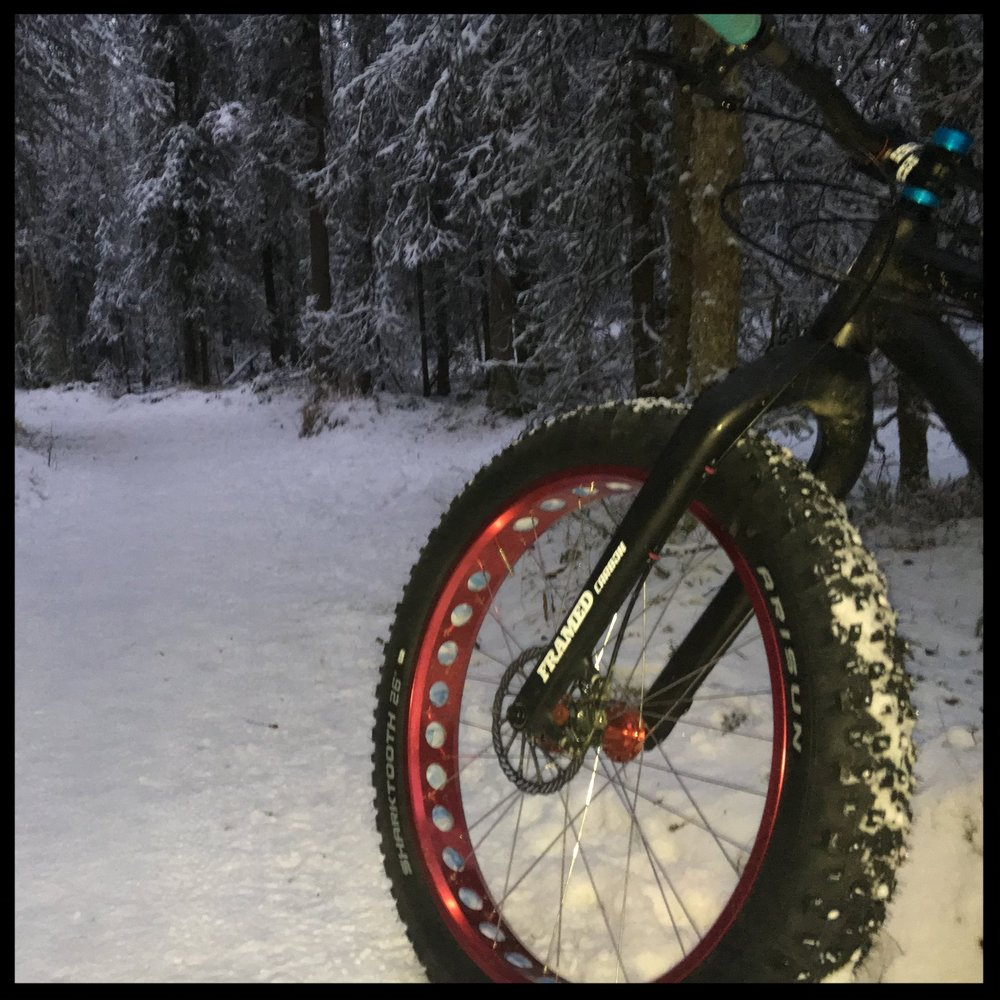 Studded Fat Bike Tire REview-Arisun Sharktooth