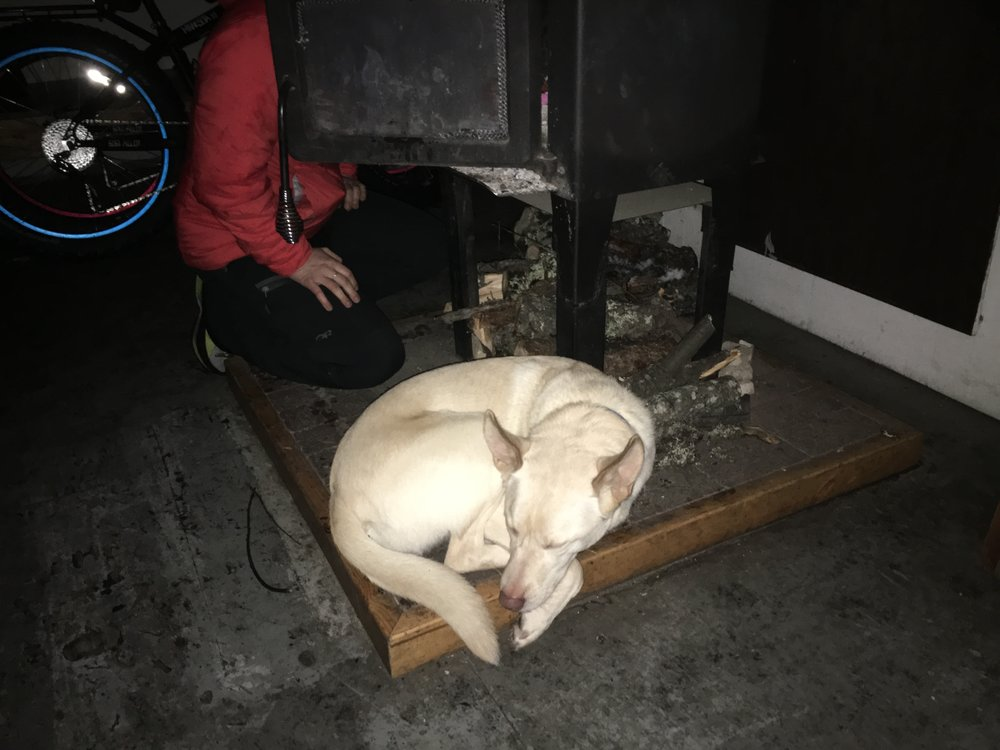 The only photo I took of the wood stove. It was so cold, the dog decided to sleep here.