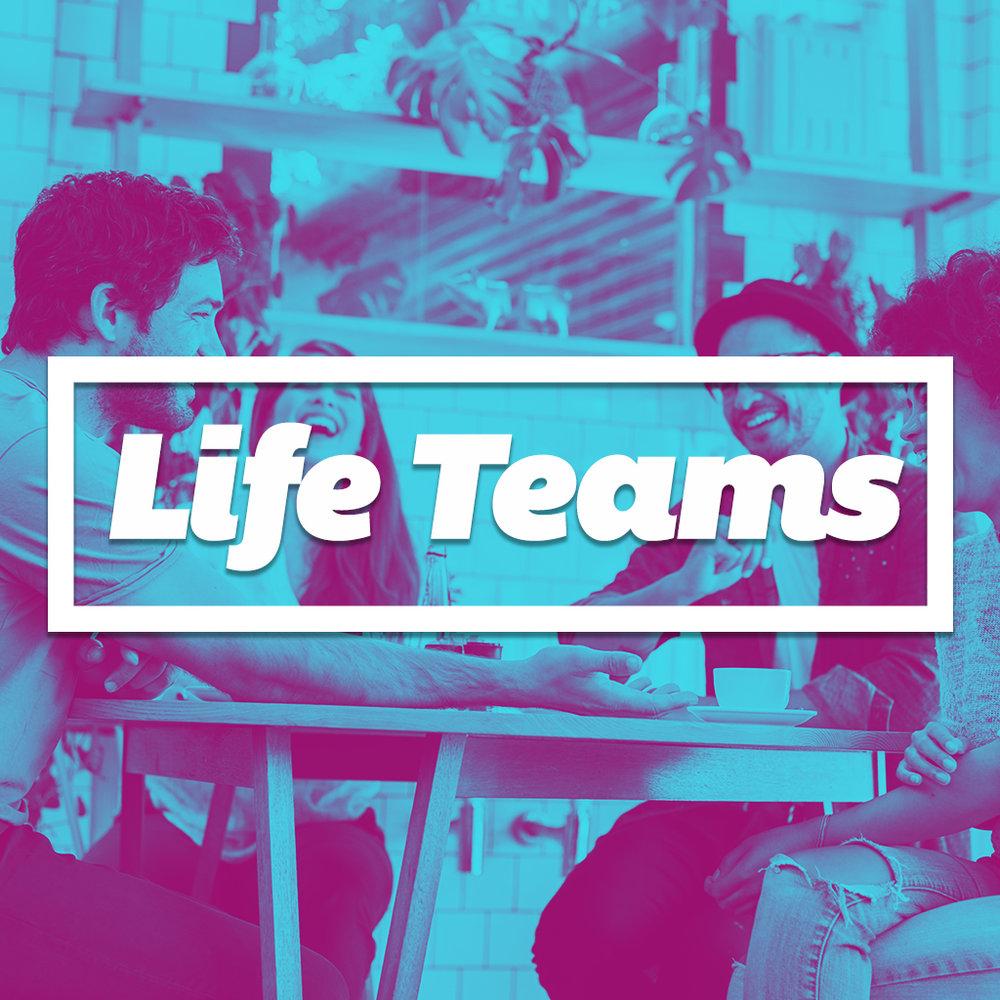 LifeTeams 1024x1024.jpg