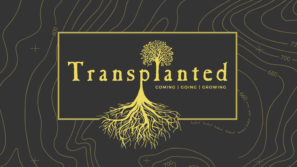 Transplanted 1920x1080.jpg