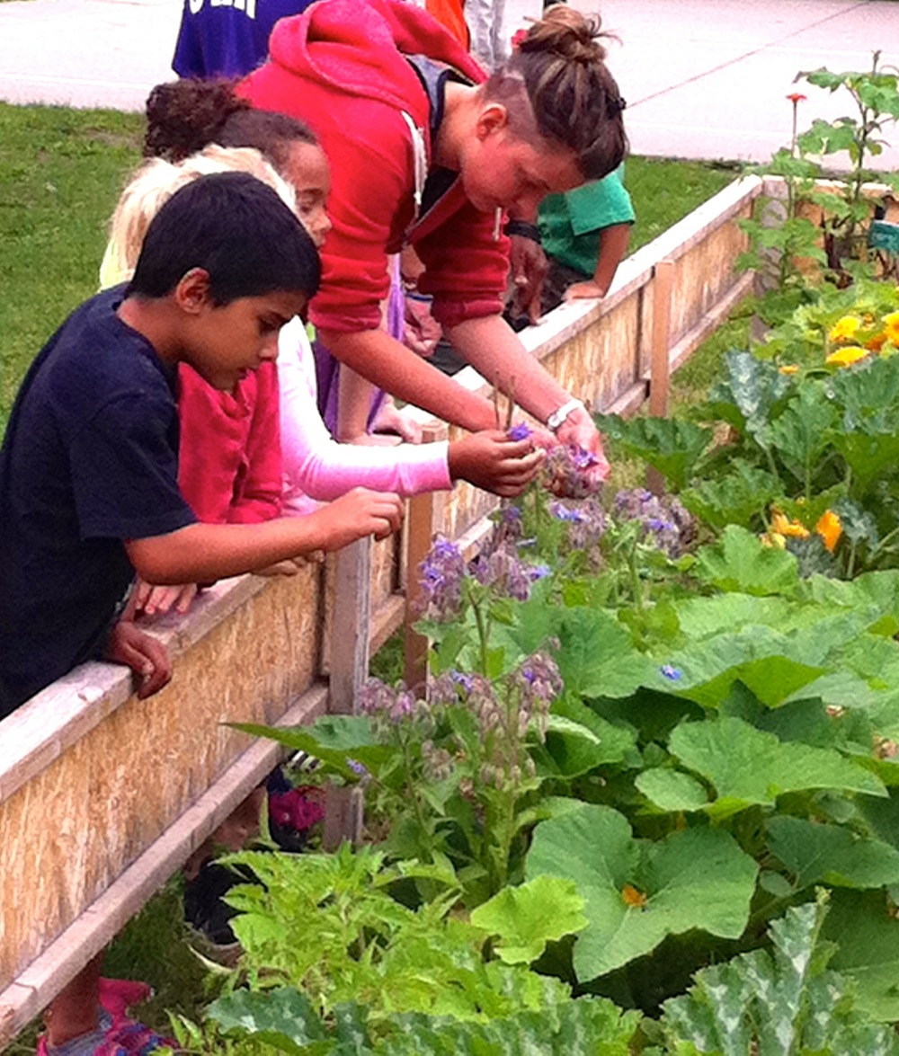 Teaching Gardens-14.jpg