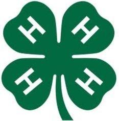 4H Clover Logo.jpg