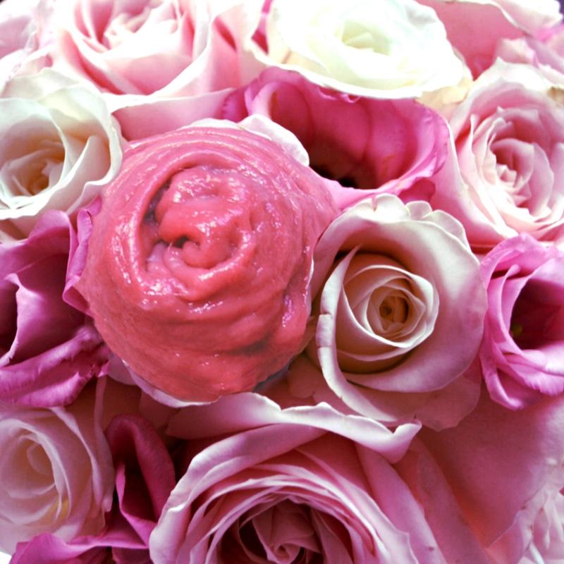 Bouton de rose #5